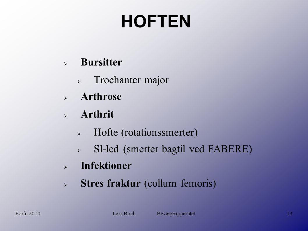 Lars Buch Bevægeapperatet