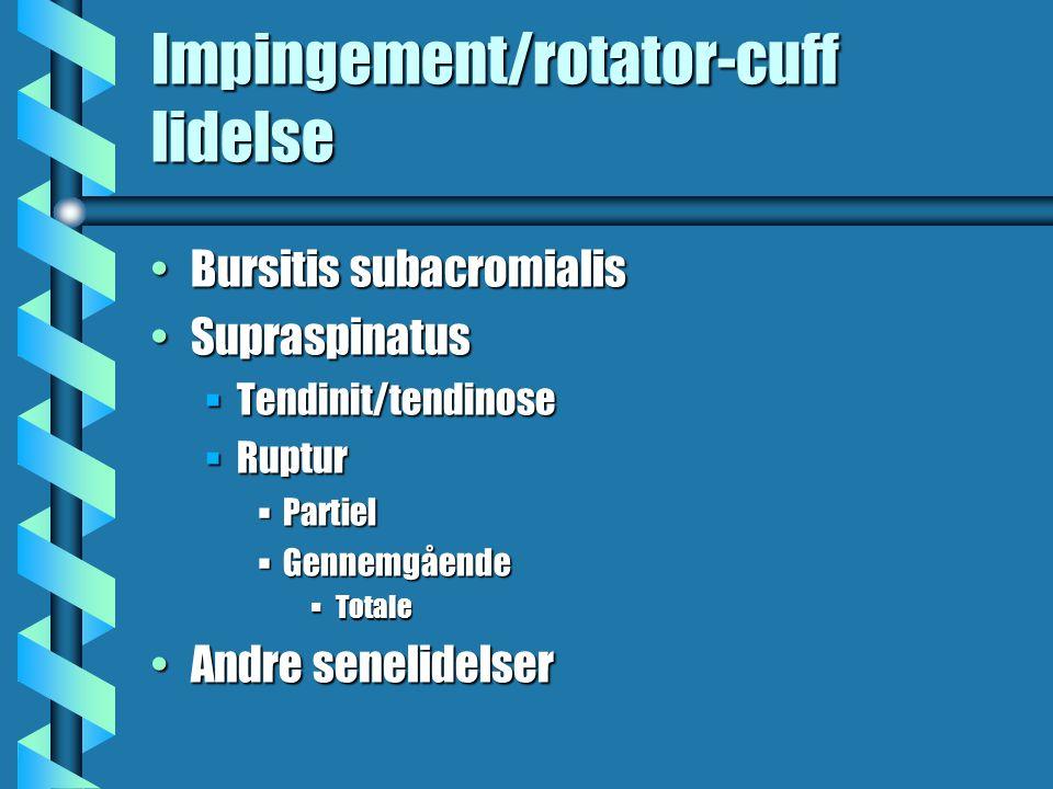 Impingement/rotator-cuff lidelse