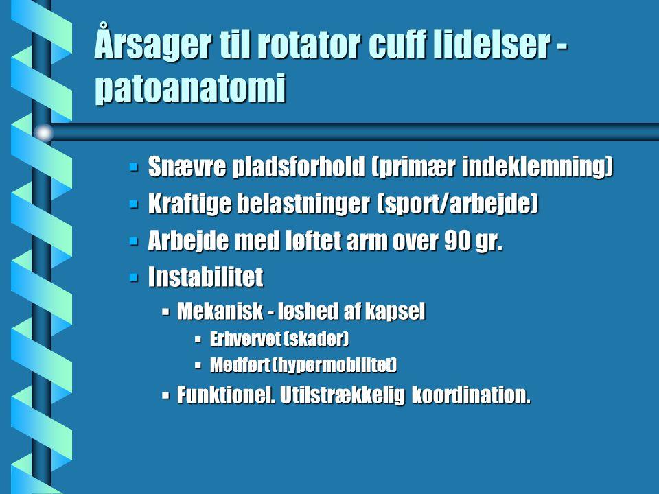 Årsager til rotator cuff lidelser -patoanatomi