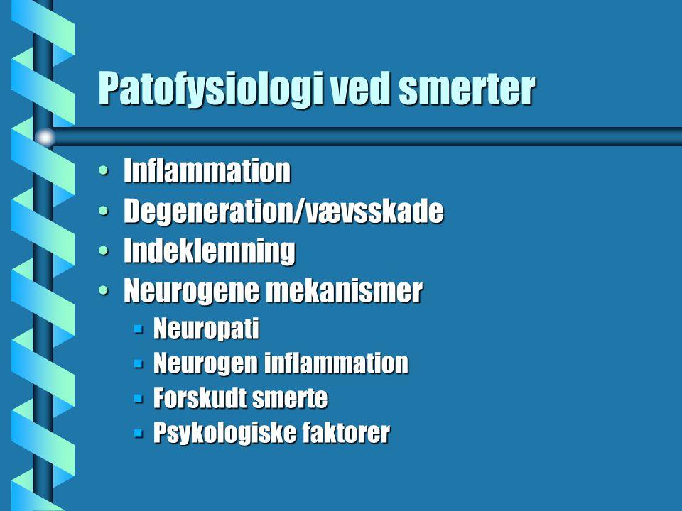 Patofysiologi ved smerter