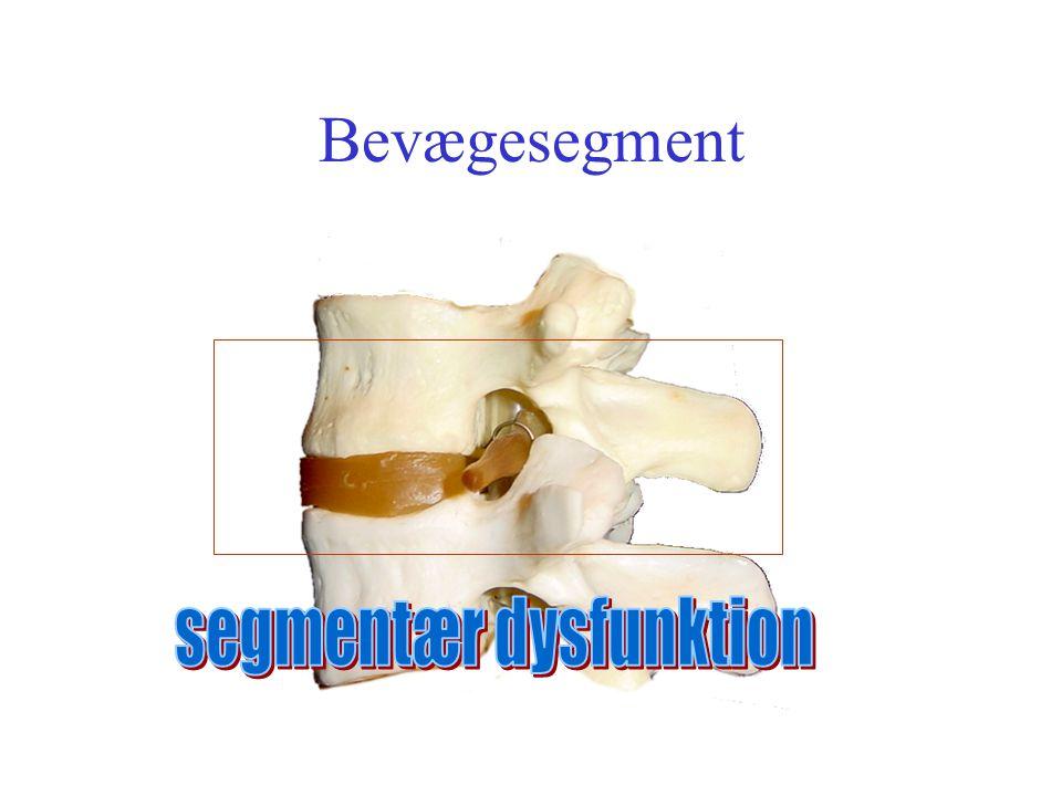 segmentær dysfunktion
