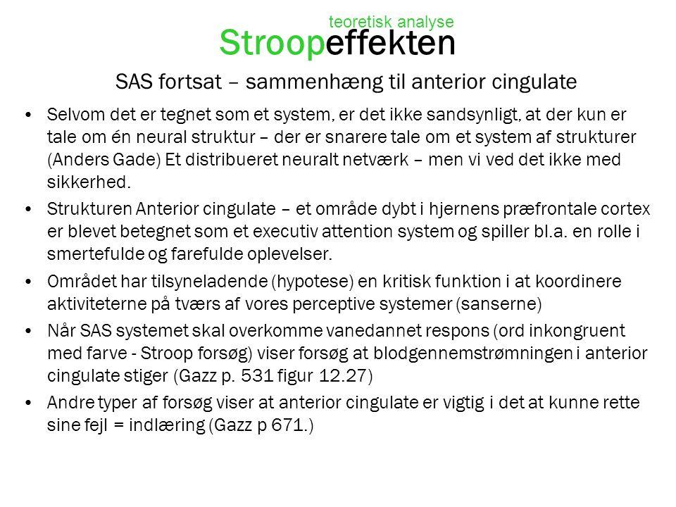 SAS fortsat – sammenhæng til anterior cingulate