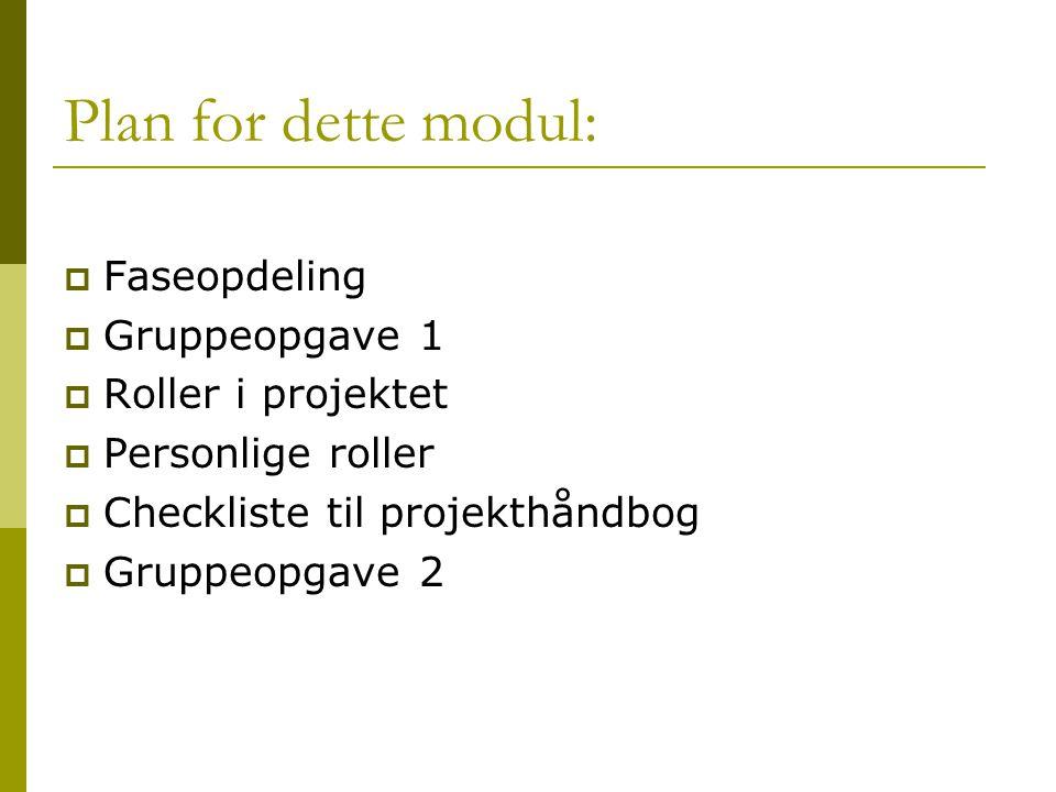 Plan for dette modul: Faseopdeling Gruppeopgave 1 Roller i projektet