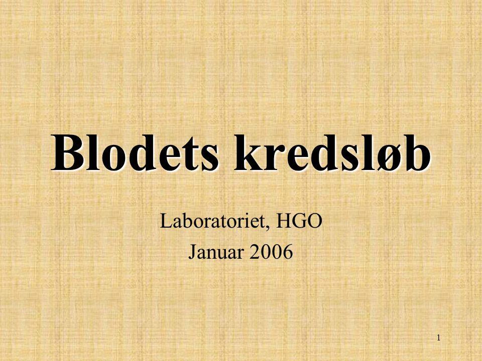 Laboratoriet, HGO Januar 2006