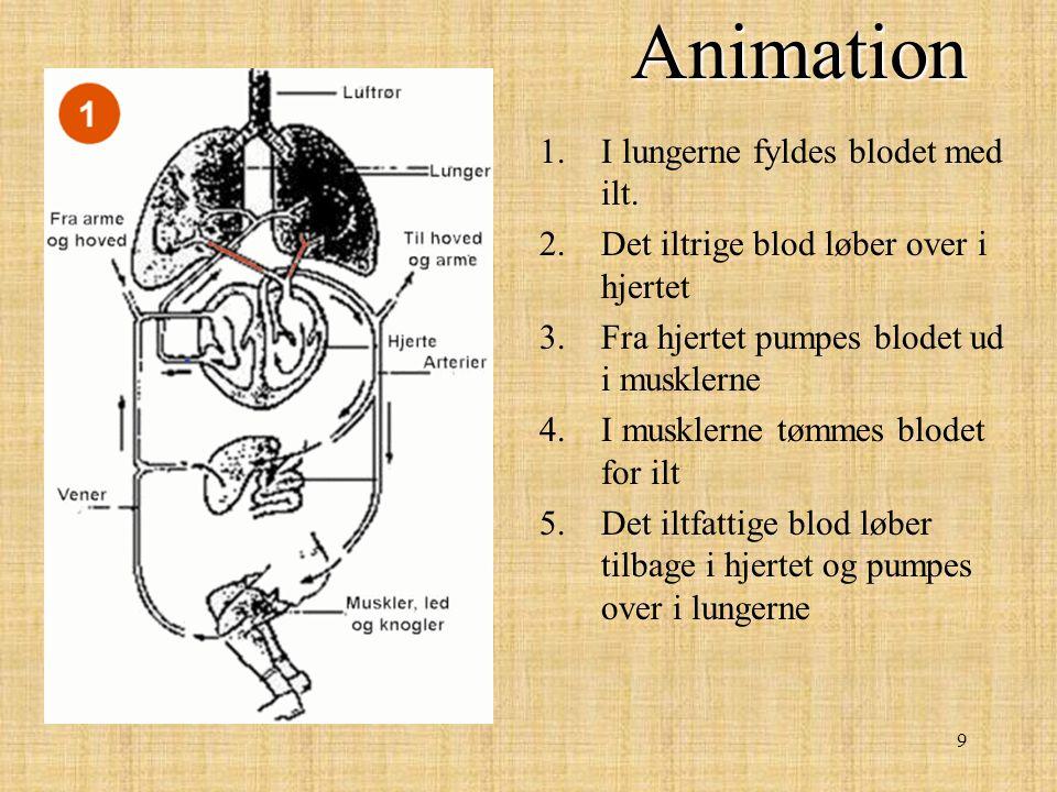 Animation I lungerne fyldes blodet med ilt.