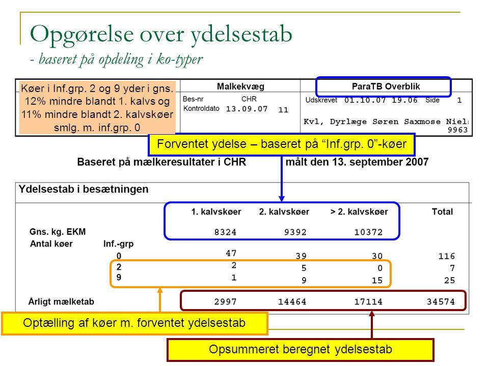Opgørelse over ydelsestab - baseret på opdeling i ko-typer