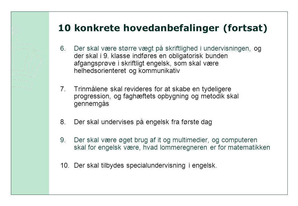 10 konkrete hovedanbefalinger (fortsat)