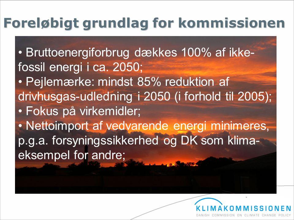 Foreløbigt grundlag for kommissionen