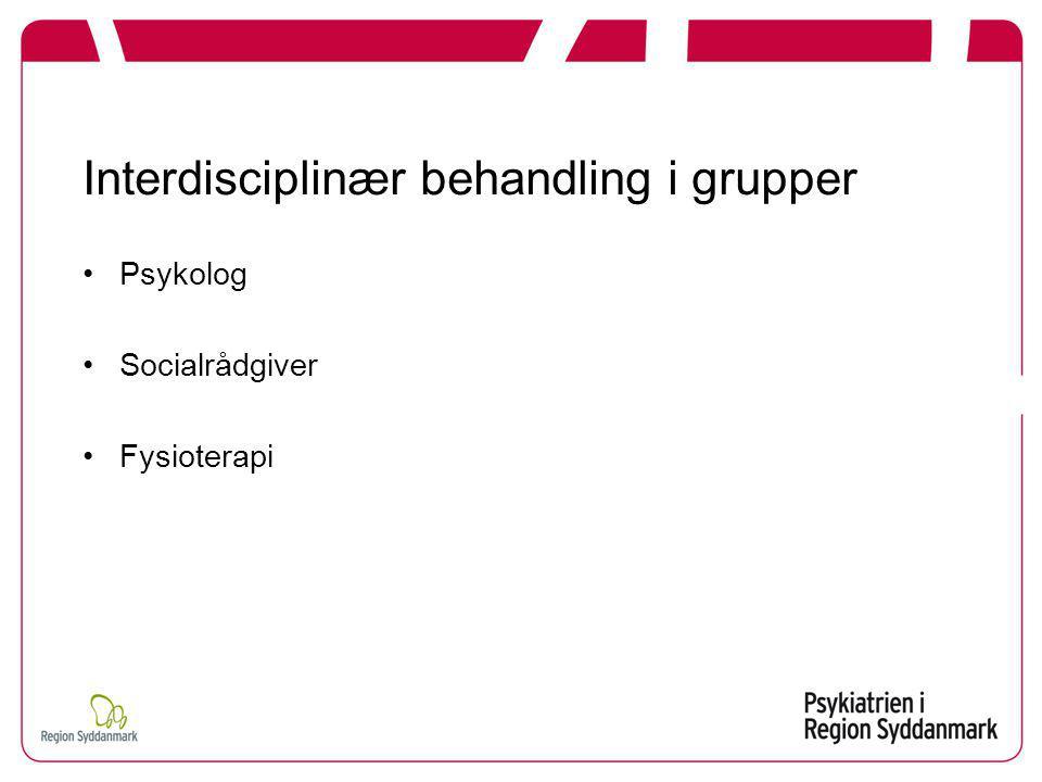 Interdisciplinær behandling i grupper