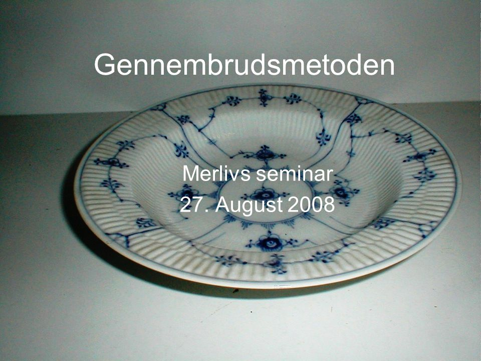 Merlivs seminar 27. August 2008