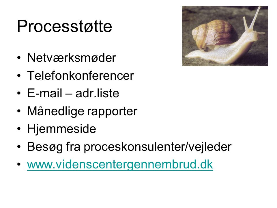 Processtøtte Netværksmøder Telefonkonferencer E-mail – adr.liste