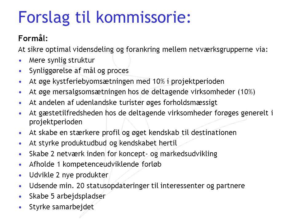 Forslag til kommissorie: