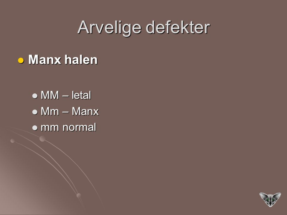 Arvelige defekter Manx halen MM – letal Mm – Manx mm normal
