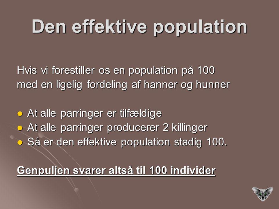 Den effektive population