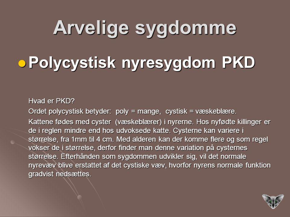 Arvelige sygdomme Polycystisk nyresygdom PKD Hvad er PKD