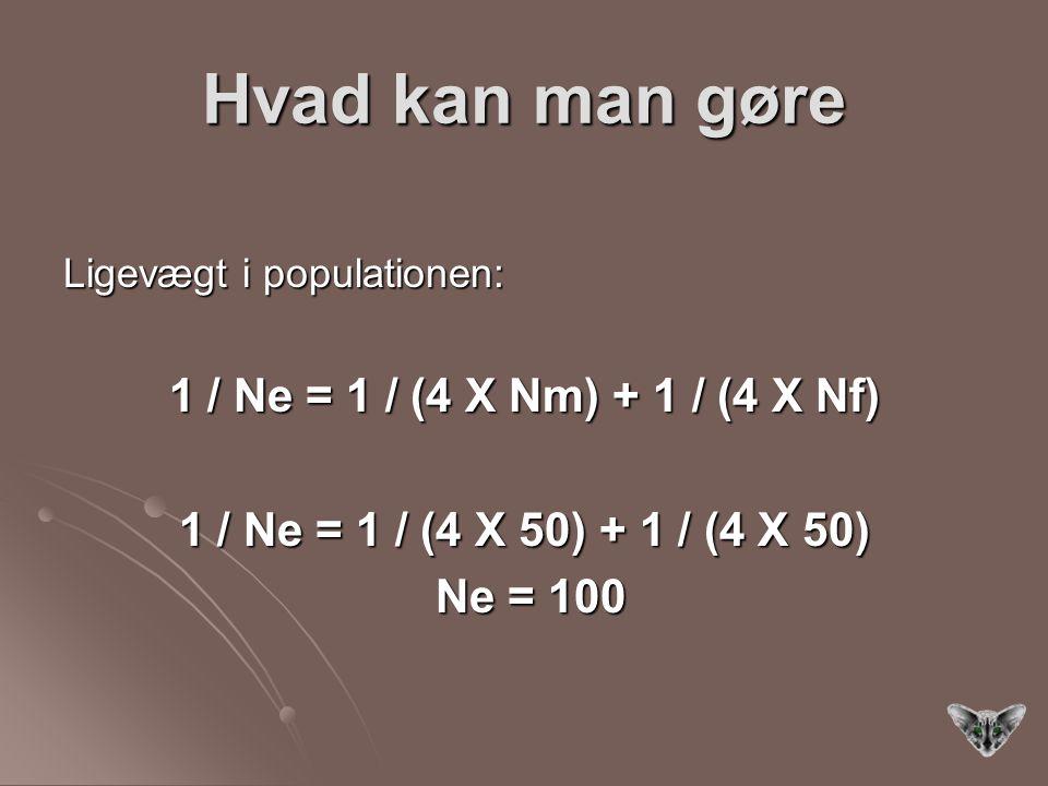 Hvad kan man gøre 1 / Ne = 1 / (4 X Nm) + 1 / (4 X Nf)