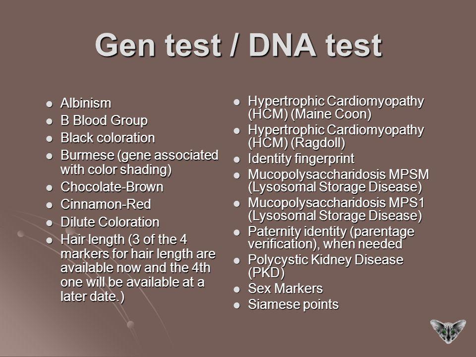 Gen test / DNA test Albinism B Blood Group Black coloration