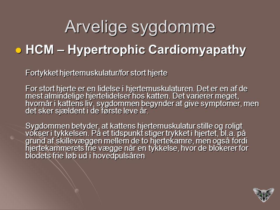Arvelige sygdomme HCM – Hypertrophic Cardiomyapathy