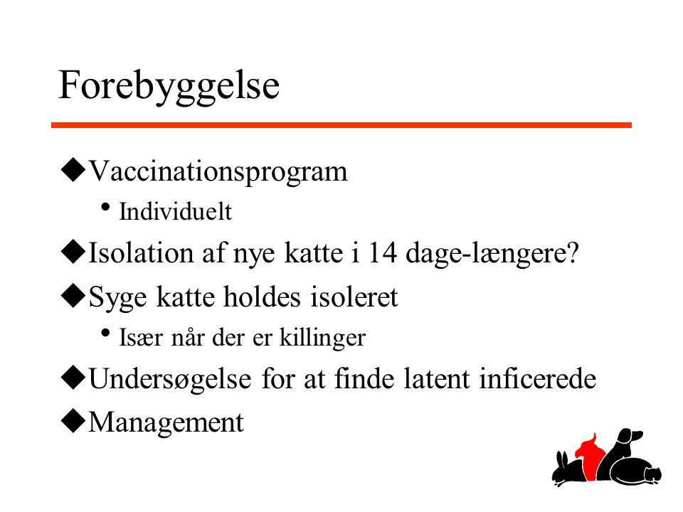 Forebyggelse Vaccinationsprogram