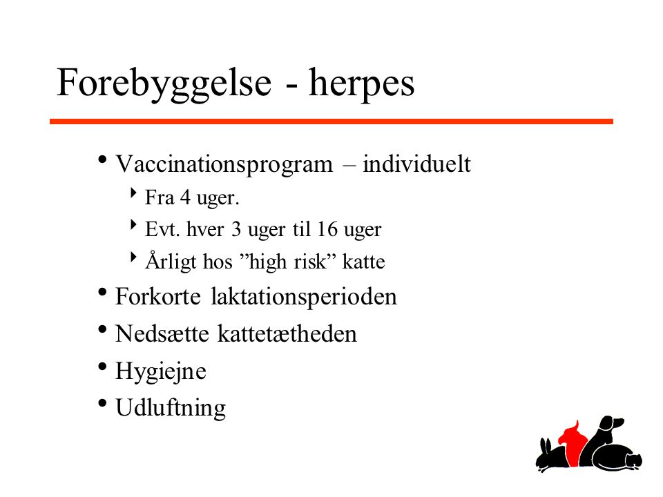 Forebyggelse - herpes Vaccinationsprogram – individuelt