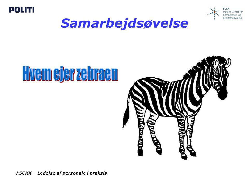 Samarbejdsøvelse Hvem ejer zebraen