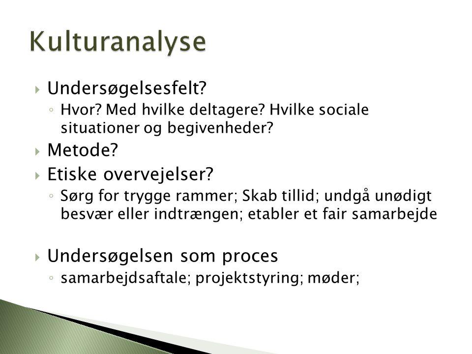 Kulturanalyse Undersøgelsesfelt Metode Etiske overvejelser