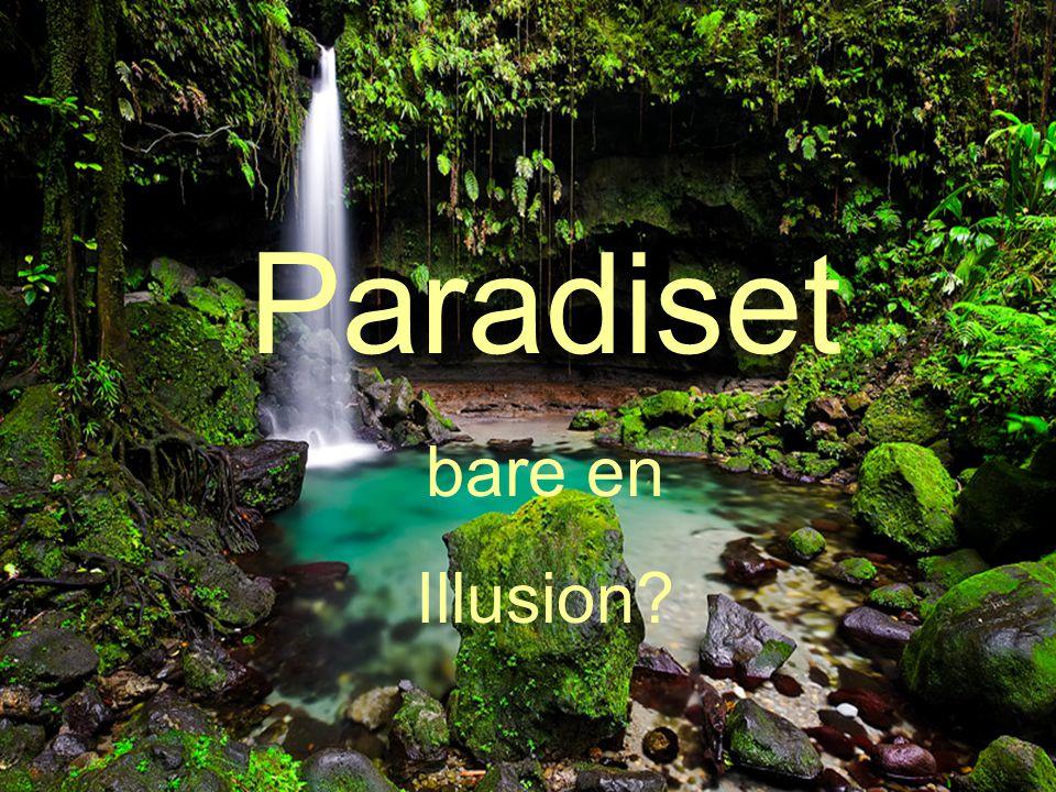 Paradiset bare en Illusion