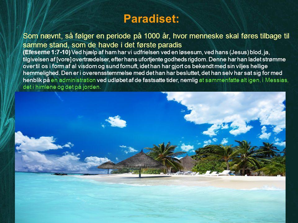 Paradiset: Som nævnt, så følger en periode på 1000 år, hvor menneske skal føres tilbage til samme stand, som de havde i det første paradis.