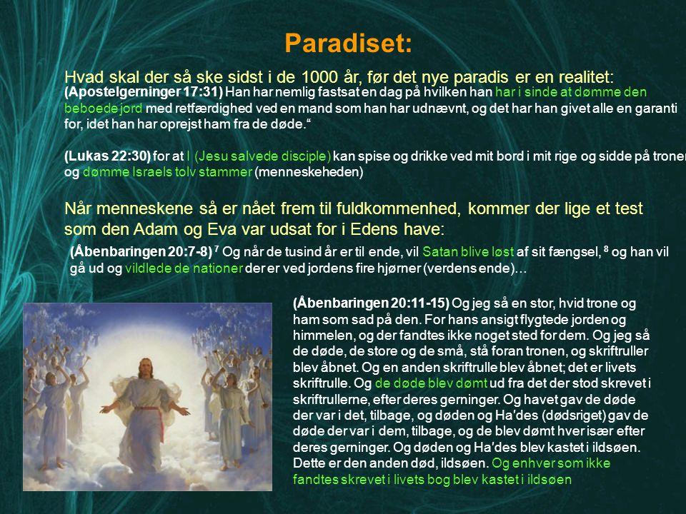 Paradiset: Hvad skal der så ske sidst i de 1000 år, før det nye paradis er en realitet: