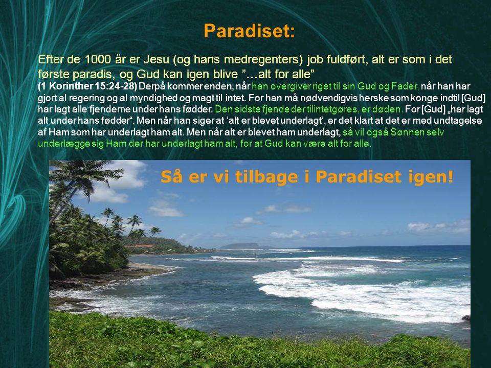 Paradiset: Så er vi tilbage i Paradiset igen!