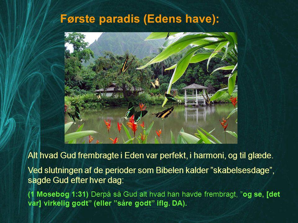 Første paradis (Edens have):