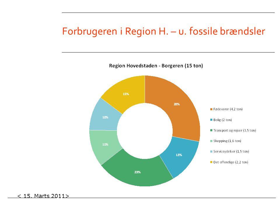 Forbrugeren i Region H. – u. fossile brændsler