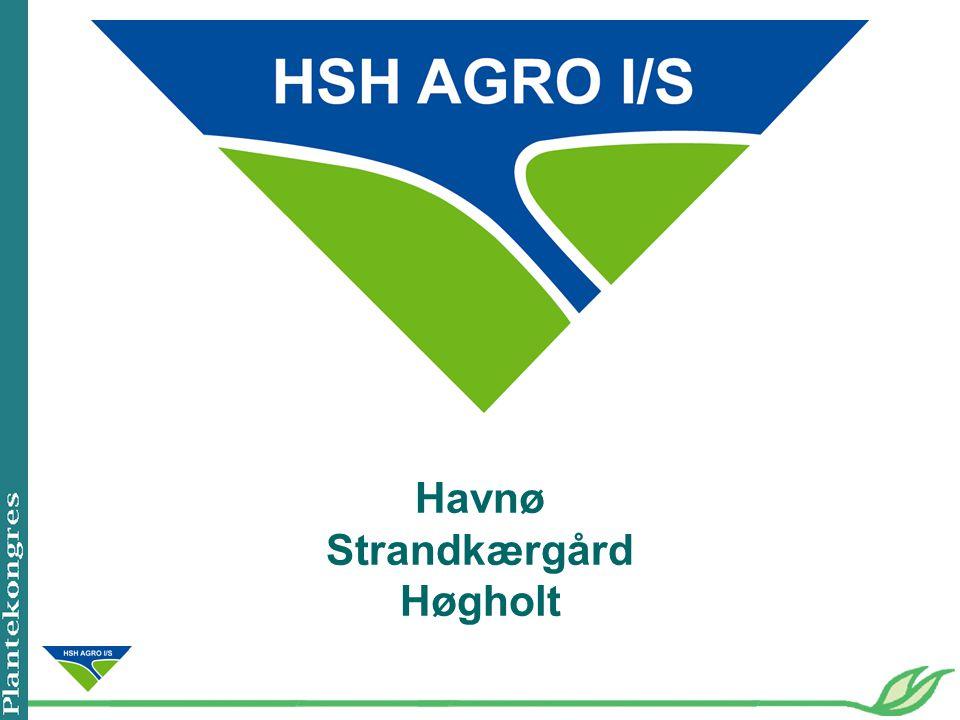Havnø Strandkærgård Høgholt
