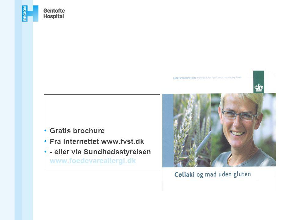 Gratis brochure Fra internettet www.fvst.dk - eller via Sundhedsstyrelsen www.foedevareallergi.dk