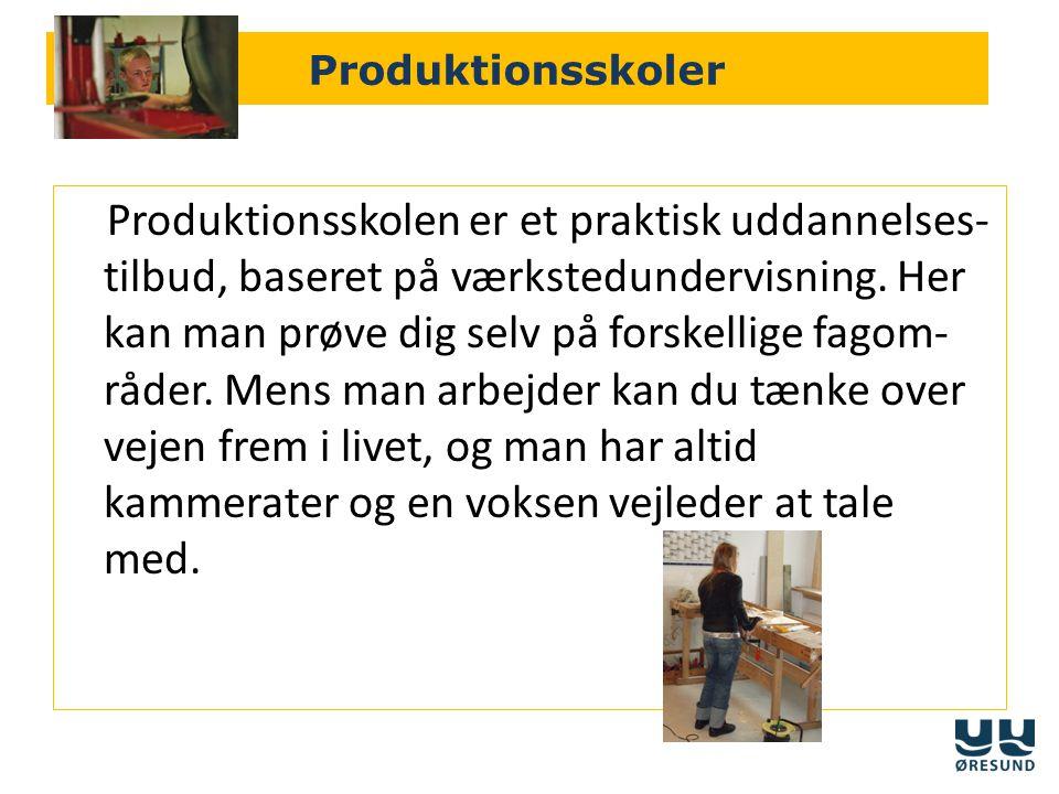 Produktionsskoler