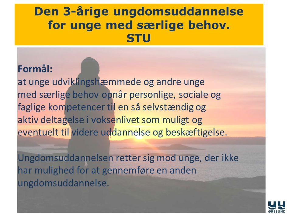 Den 3-årige ungdomsuddannelse for unge med særlige behov. STU