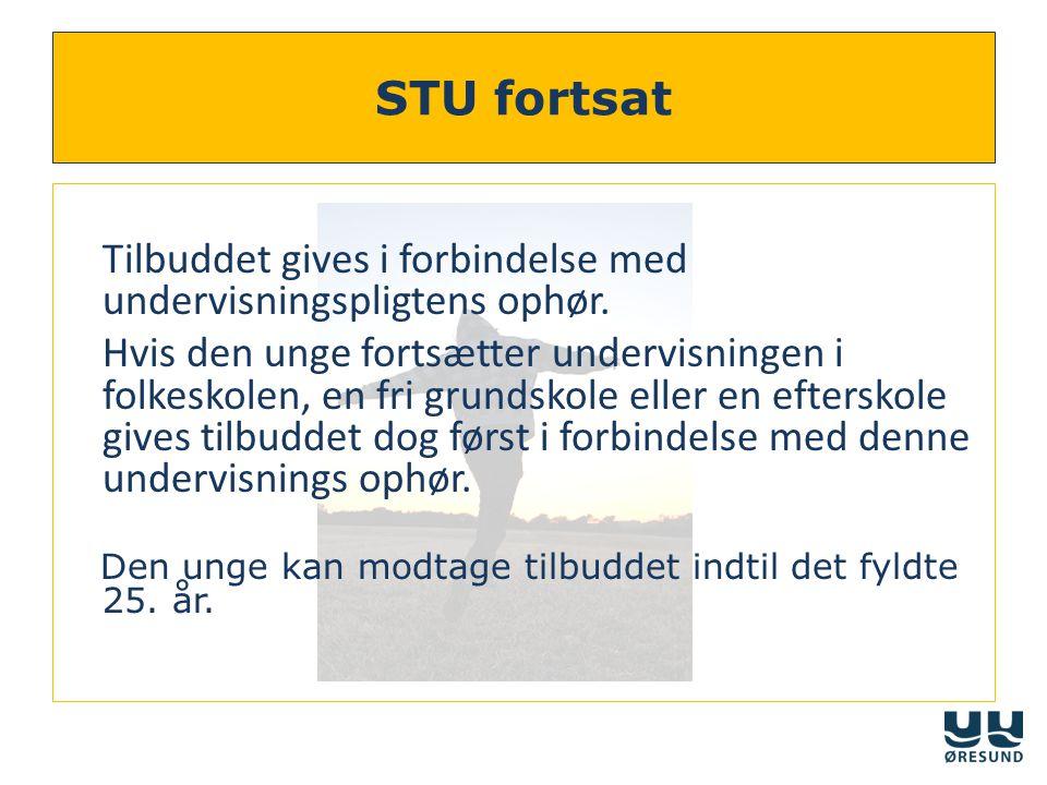 STU fortsat Tilbuddet gives i forbindelse med undervisningspligtens ophør.