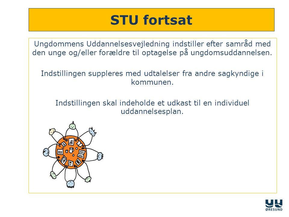 STU fortsat Ungdommens Uddannelsesvejledning indstiller efter samråd med den unge og/eller forældre til optagelse på ungdomsuddannelsen.