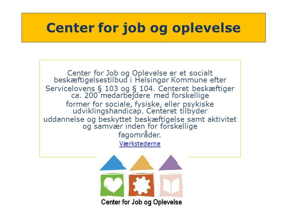 Center for job og oplevelse