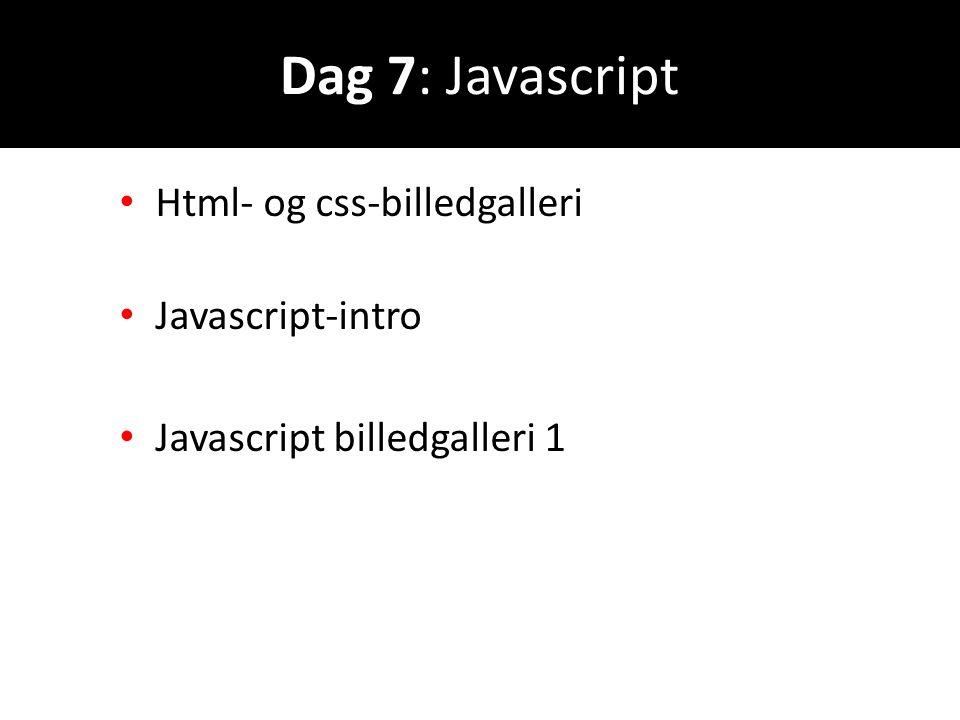Dag 7: Javascript Html- og css-billedgalleri Javascript-intro
