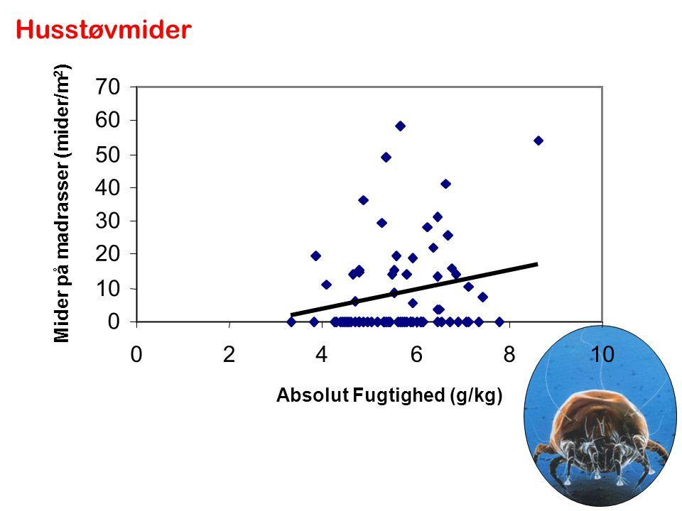 Husstøvmider 70 60 50 40 Mider på madrasser (mider/m2) 30 20 10 2 4 6 8 10 Absolut Fugtighed (g/kg)