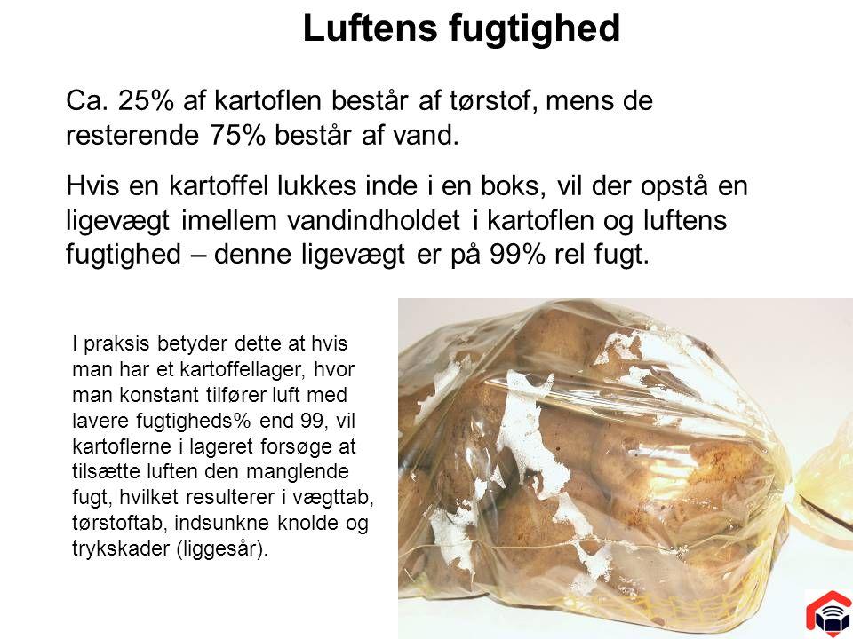 Luftens fugtighed Ca. 25% af kartoflen består af tørstof, mens de resterende 75% består af vand.