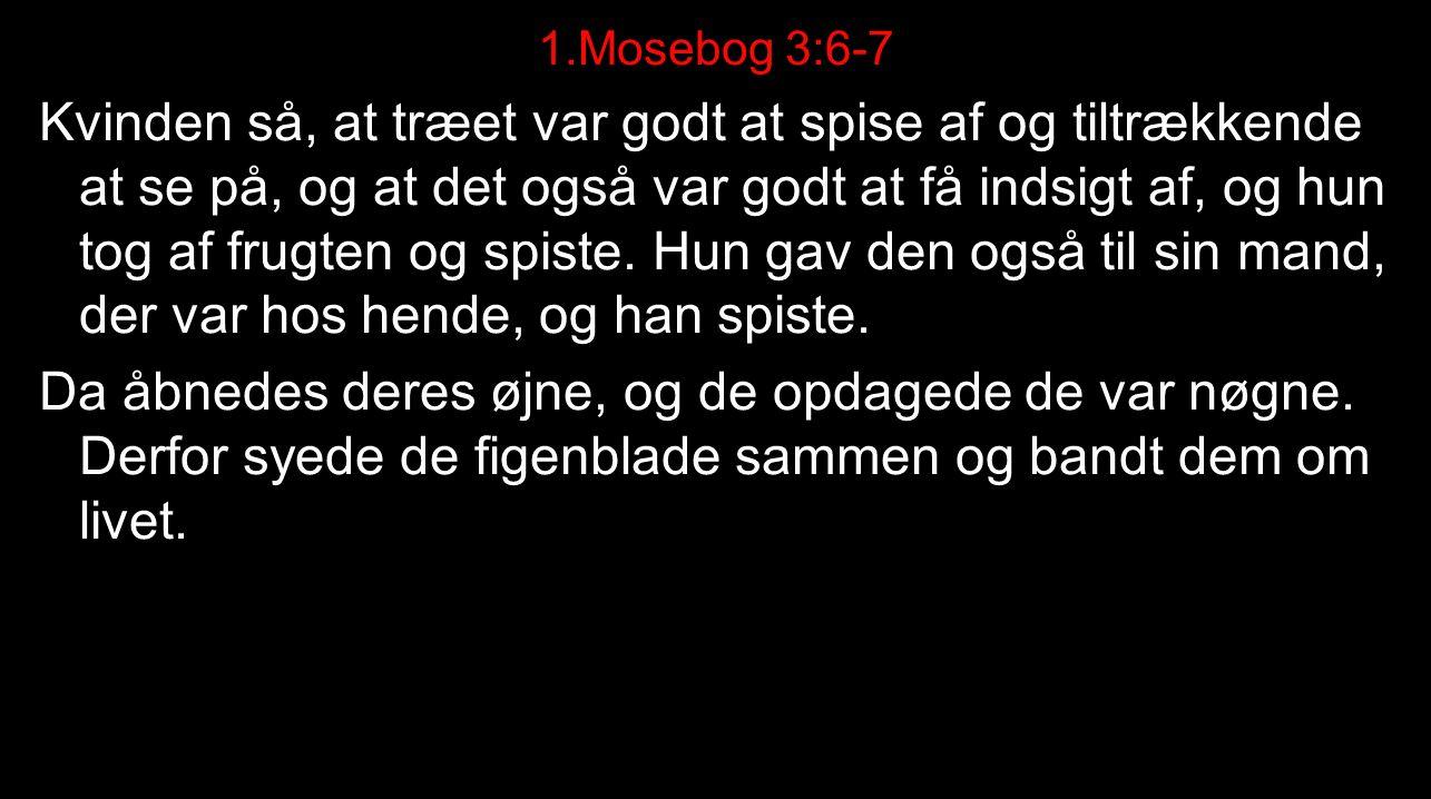 1.Mosebog 3:6-7