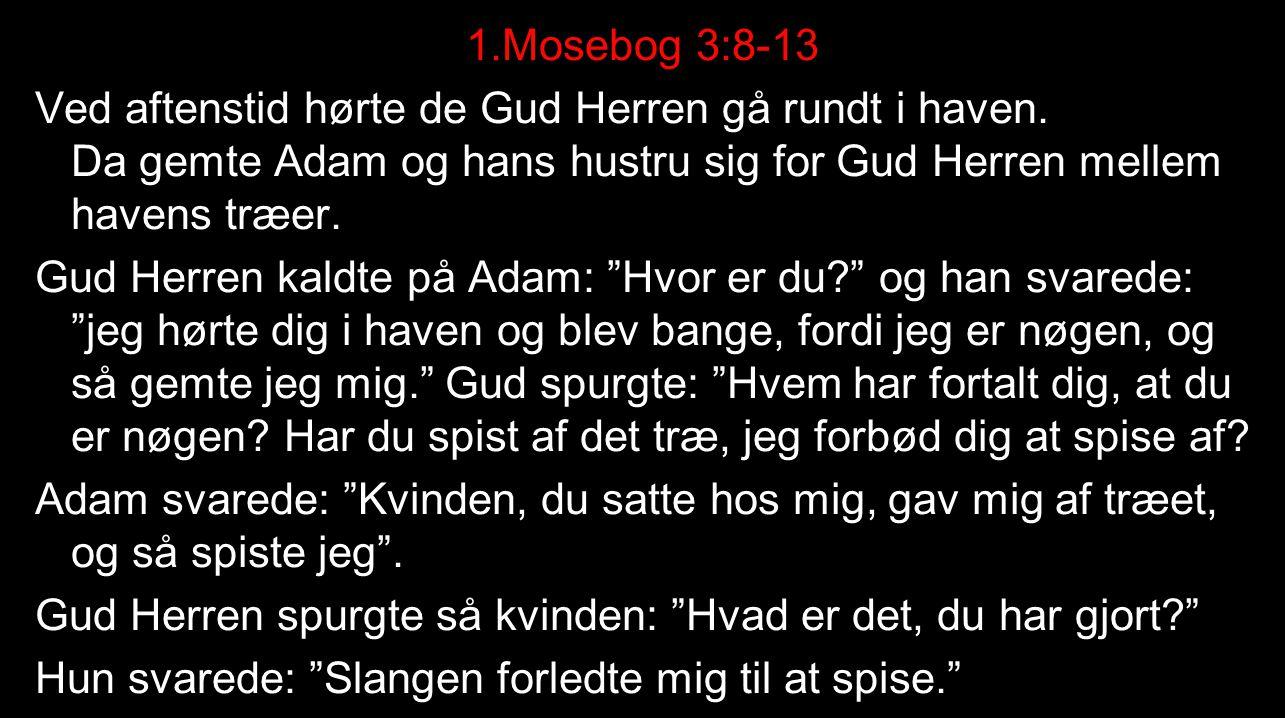 1. Mosebog 3:8-13 Ved aftenstid hørte de Gud Herren gå rundt i haven