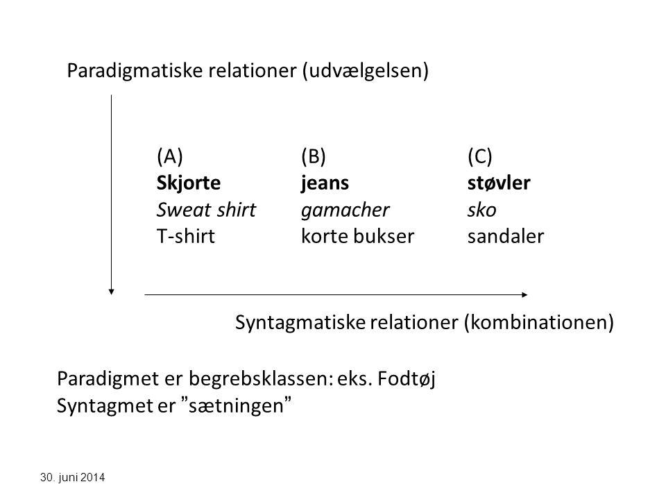 Paradigmatiske relationer (udvælgelsen)