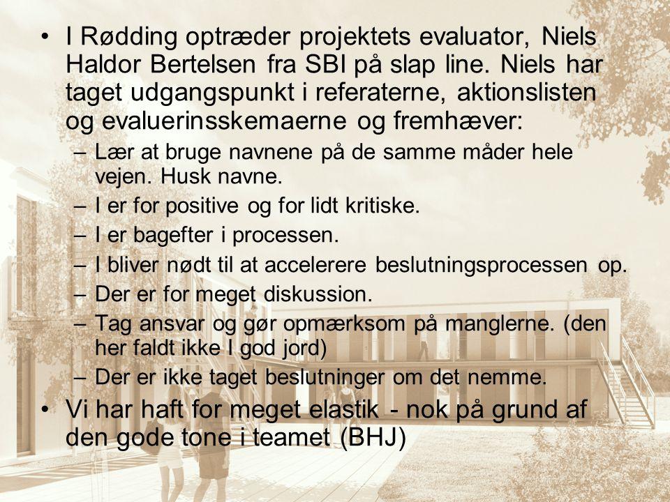 I Rødding optræder projektets evaluator, Niels Haldor Bertelsen fra SBI på slap line. Niels har taget udgangspunkt i referaterne, aktionslisten og evaluerinsskemaerne og fremhæver: