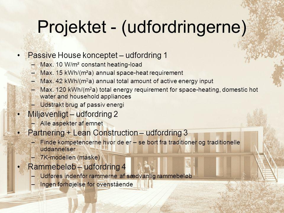 Projektet - (udfordringerne)