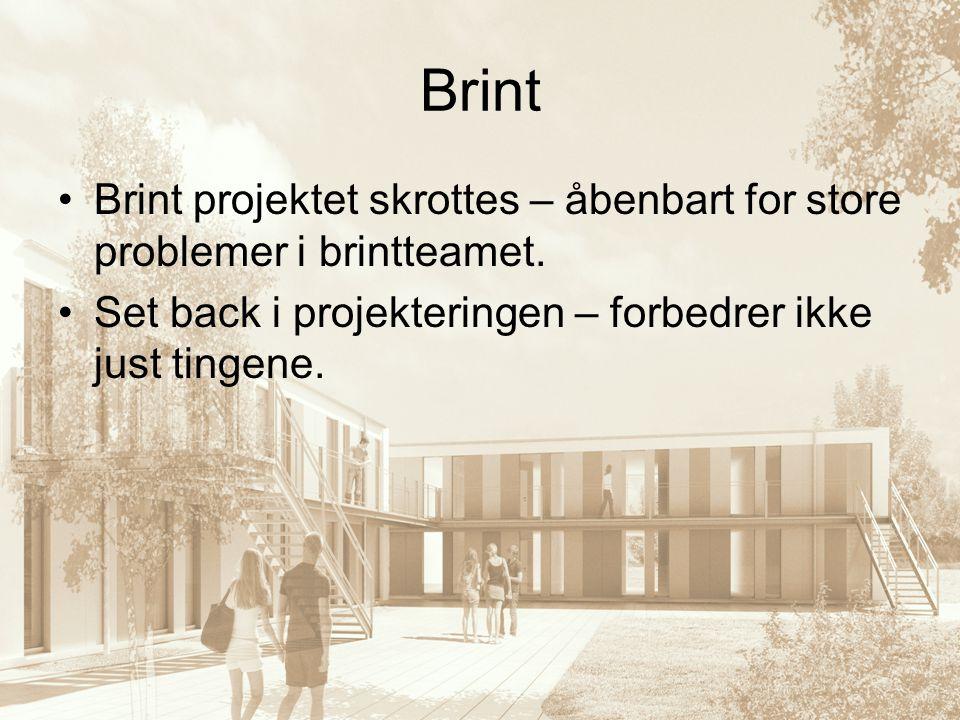 Brint Brint projektet skrottes – åbenbart for store problemer i brintteamet.