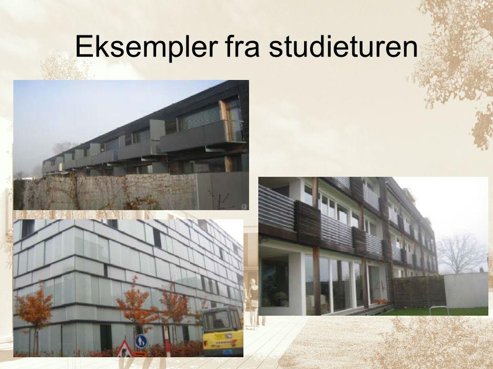 Eksempler fra studieturen