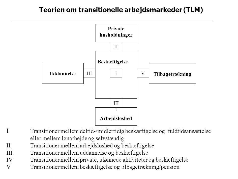 Teorien om transitionelle arbejdsmarkeder (TLM) Private husholdninger